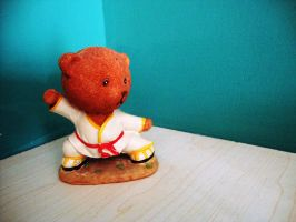 Kung Fu bear by Laura-in-china