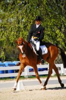 KR09 Dressage 16 by zeeplease