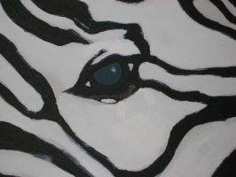 Zebra by Mrs-Mims