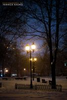 Night of First Snowstorm III by confucius-zero