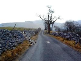 Road in Malham by twankydillo