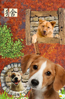 Dog House by Dan-Tocher