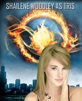 Tris-Divergent Fan Art (2012) by astateofconfusion