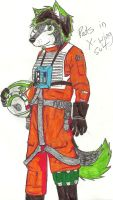 Pads the jedi and x-wing fighter by sonofawerewolf