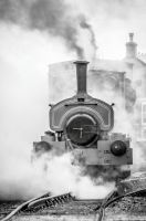 Chasewater Steam 1 by Grunvald
