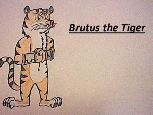 Brutus the Tiger
