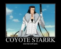 Starrk Demotivational by RyeUkitake
