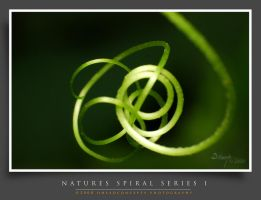 Spiral-Series10 by dhead