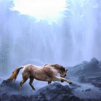Horse In Waterfall by paintedhjx3
