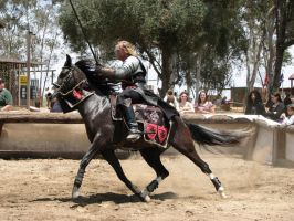 More Knight Joust Stock 046 by tursiart