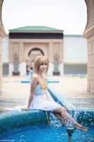 Tsubasa: Reservoir Chronicle by wisely84