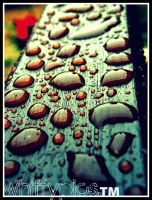 raindrops. by whiffypics