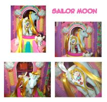 MLP Custom : Sailor Moon by marienoire