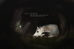 Illume by Stella--Chan