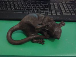 Pouched Rat WIP - base coat by philosophyfox