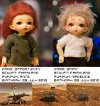 BJD Profiles: Opportunity and Spirit by avarenity