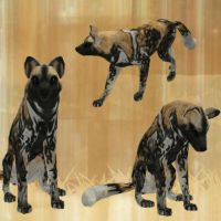 African Wild Dog Preset by i-HeartArt