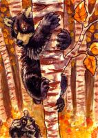 Woodland Wussie ACEO by thornwolf