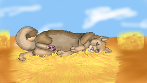 Laying on a Hay Stack by TheDragonInTheCenter