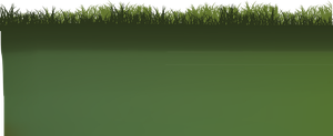 grass cut out by DIGITALWIDERESOURCE