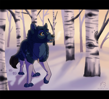 Winter Walk by WindWo1f