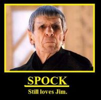 Spirk Demotivational 13 by youliedanyway