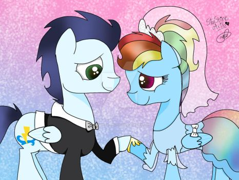 Soarin and Dashie's wedding by Sapphirearts0123