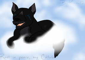 Rest in Peace, Catulo... by Karu12