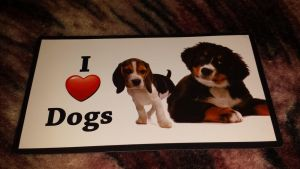 I love dogs magnet by Akitas237collections