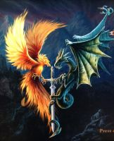 Phoenix and dragon by isaac77598