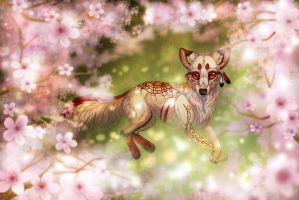 Harmony by LiaBorderCollie