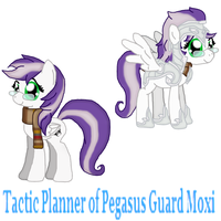 Tactic Planner of Pegasus Guard MOXI by Highwind-Sniper