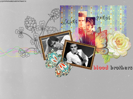 Damon and Stefan: Blood Brothers by DarkFairy007