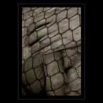 Trapped II by inverti