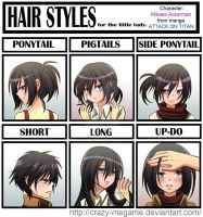 Attack Of Titan:Mikasa's Hair meme by Crazy-megame