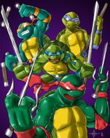 Turtle POWER by Codax