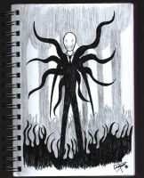 Slender 1 by tyffanwy