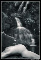 Nature's Curves BW by aFeinNude