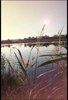 at the lake.. by afron