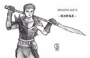 Dragon Age 2: Hawke no Fuzz by shrouded-artist