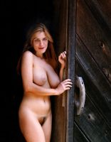 Anna in barn door by fineartimages