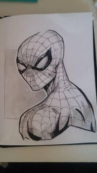 Spiderman by partyboy3543