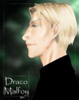 Draco in profile by Duomi