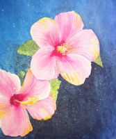 Hibiscus by SoapyFresh