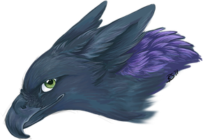 derp gryph head by winternacht