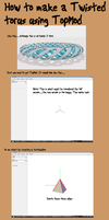 How to make a Braided Torus by pyrohmstr