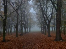 Autumn Path 11 by pelleron-stock