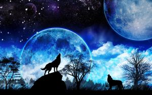 Wolf and a Moons by sphicx