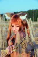 Spice and Wolf - Horo 02 by CrazyRabbit