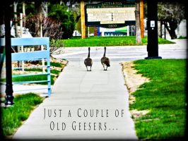 Just A Couple Of Old Geesers by AnuDesignNow